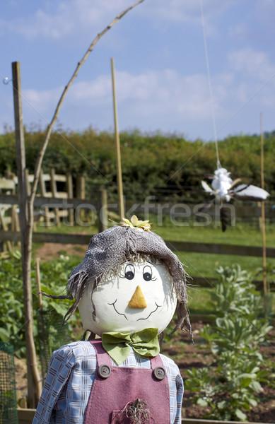 Smiling Scarecrow Stock photo © naffarts