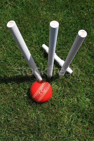 Cricket borgtocht bal portret formaat afbeelding Stockfoto © naffarts