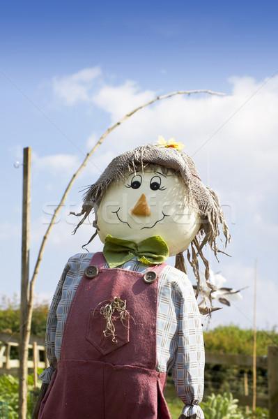 Scarecrow Stock photo © naffarts