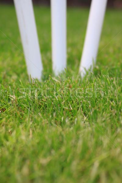 Cricket Stumps Stock photo © naffarts