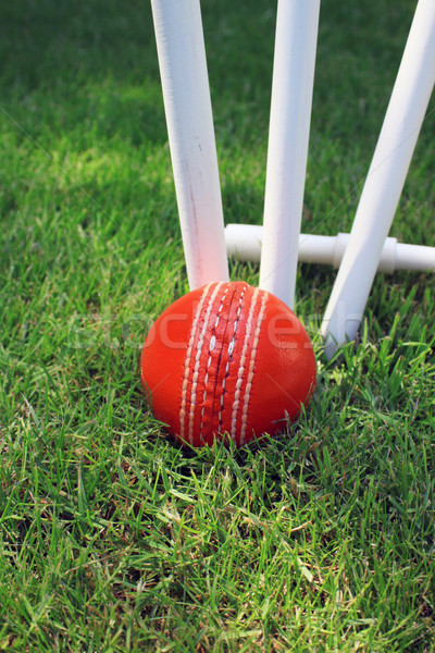 Cricket Ball and Stumps Stock photo © naffarts