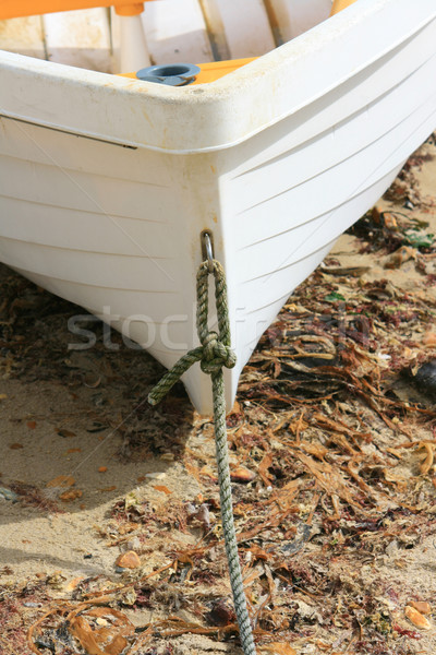 Dingy Stock photo © naffarts