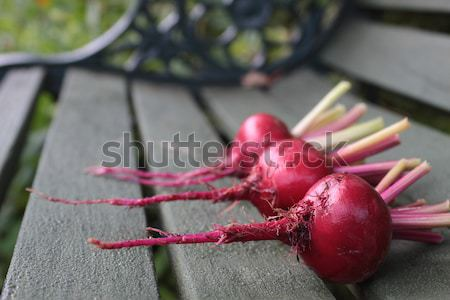 Harvested Beetroot Stock photo © naffarts