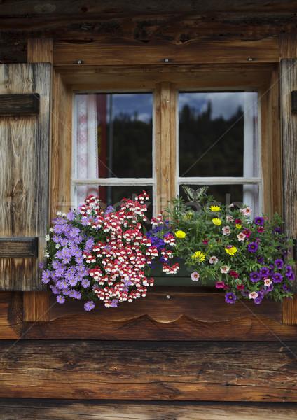 Flor colorido windows alpino cabine Áustria Foto stock © nailiaschwarz