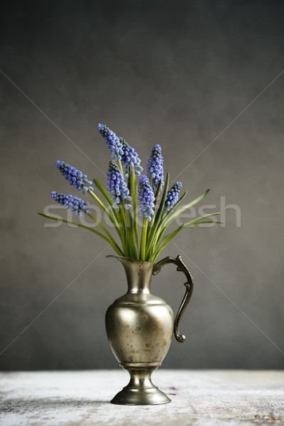 ヒヤシンス 静物 レトロな ブドウ 金属 花瓶 ストックフォト © nailiaschwarz
