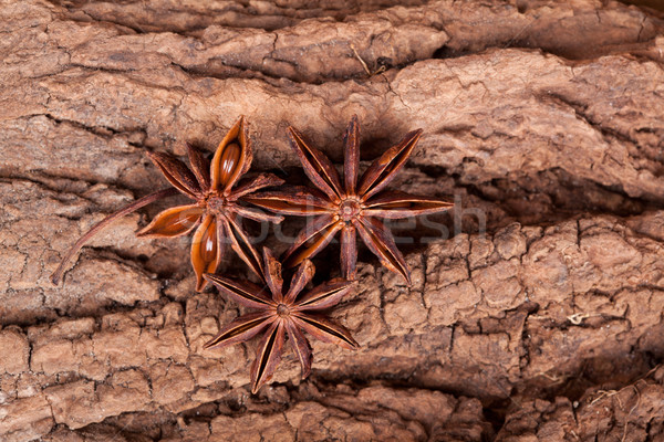 Anise stars Stock photo © nailiaschwarz