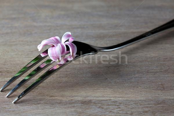Steel Fork on wooden Table Stock photo © nailiaschwarz
