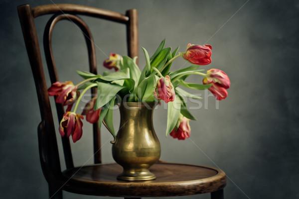 Withered Tulips Stock photo © nailiaschwarz