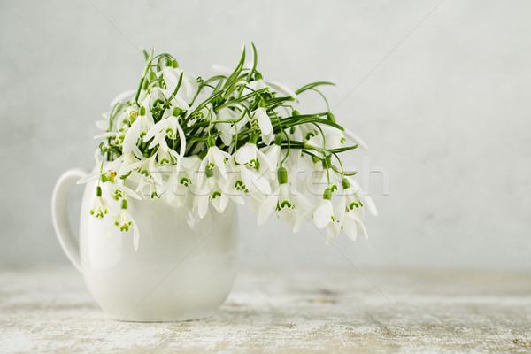 花 美しい 白 春 花 ストックフォト © nailiaschwarz