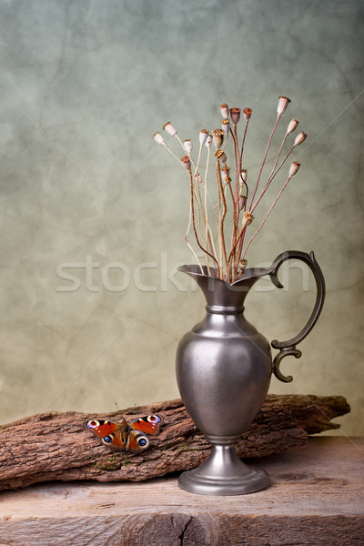 Still Life with Butterfly Stock photo © nailiaschwarz
