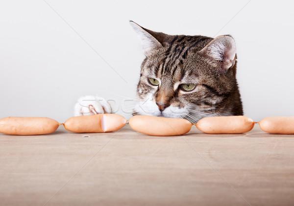 Cat and Sausages Stock photo © nailiaschwarz