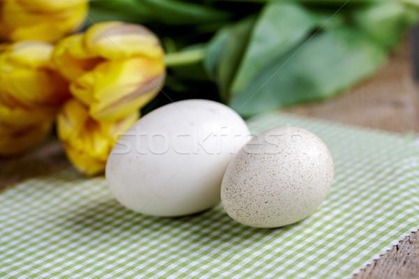 Kaz yumurta ördek iki farklı yumurta Stok fotoğraf © nailiaschwarz