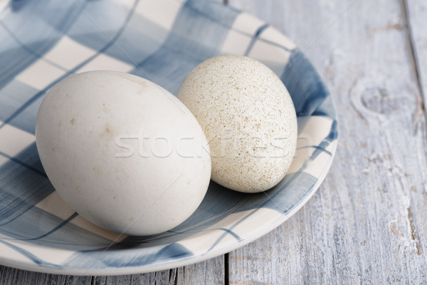 Goose and Duck Egg Stock photo © nailiaschwarz