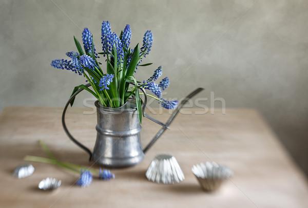 Csendélet szőlő antik locsolókanna öreg rusztikus Stock fotó © nailiaschwarz