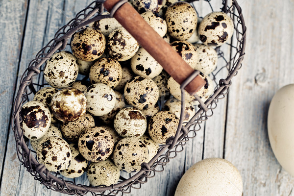 Quail Eggs Stock photo © nailiaschwarz