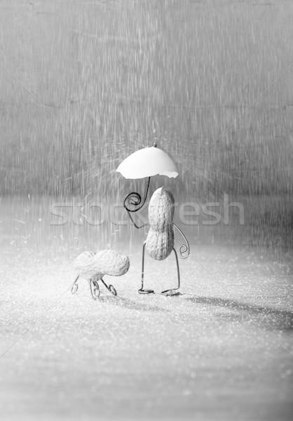Slechte weer miniatuur pinda man hond paraplu Stockfoto © nailiaschwarz