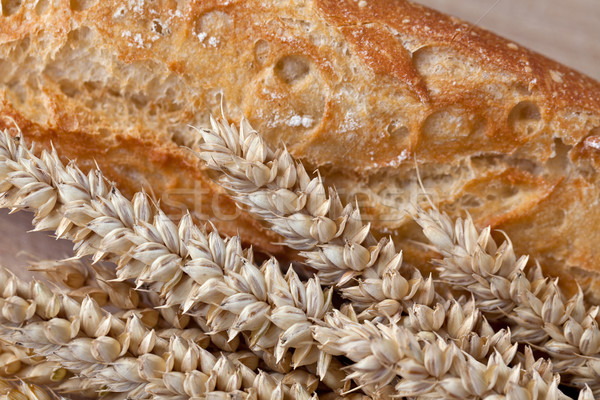Wheat and Bread Stock photo © nailiaschwarz