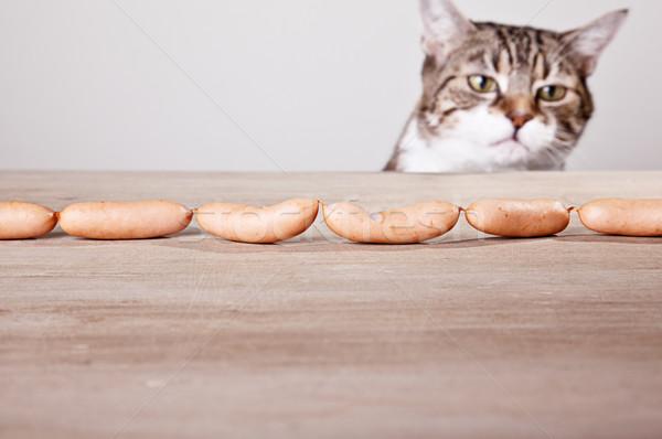 Macska kolbászok kíváncsi asztal étel konyha Stock fotó © nailiaschwarz