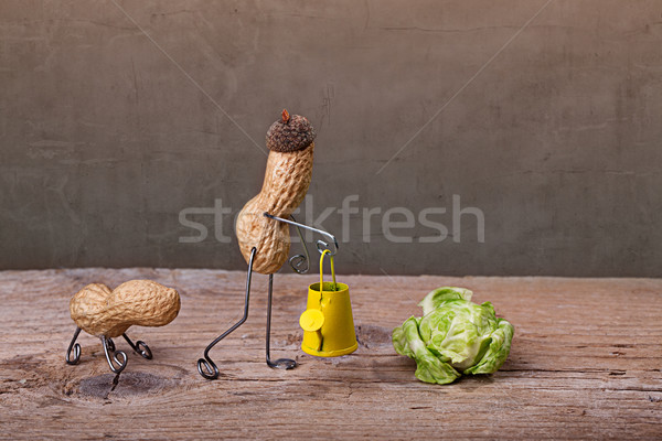 Gardening Stock photo © nailiaschwarz