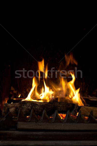 Zdjęcia stock: Ognisko · palenie · sztuk · drewna · metal