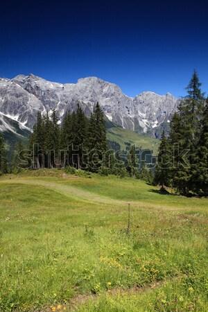 Hegy terjedelem kilátás hegyek Alpok égbolt Stock fotó © nailiaschwarz