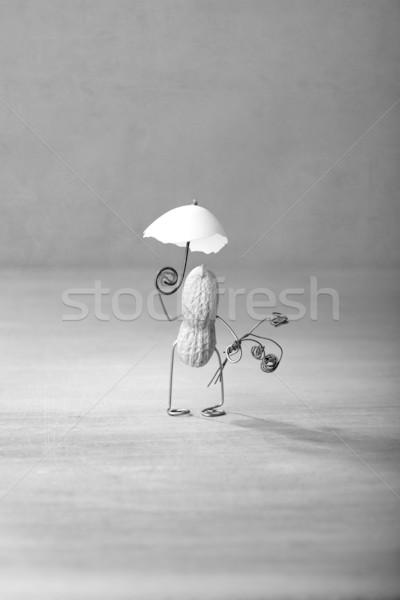 Taking a Walk Stock photo © nailiaschwarz
