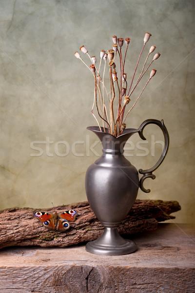Still Life with Butterfly Stock photo © nailiaschwarz