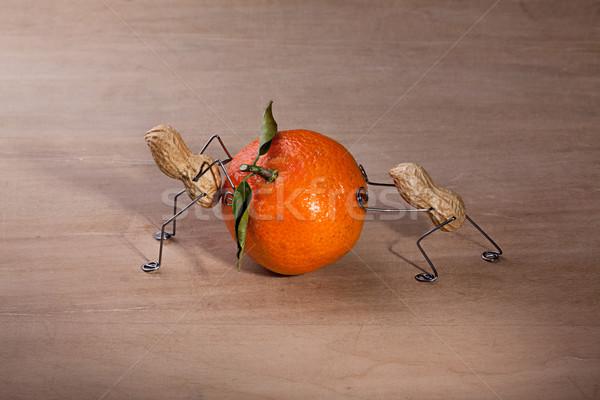 Duro lavoro miniatura arachidi persone che lavorano altro spostare Foto d'archivio © nailiaschwarz