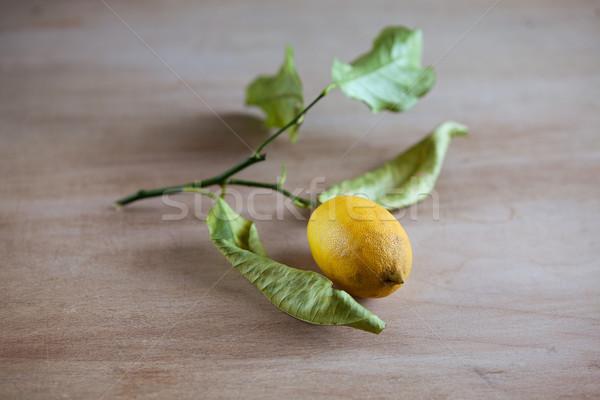 Ripe lemons on a leafy twig Stock photo © nailiaschwarz