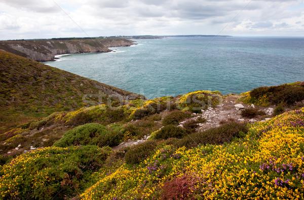 海岸 キャップ 風景 ビーチ 雲 ストックフォト © nailiaschwarz