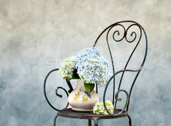 Stock photo: Hortensia Flowers