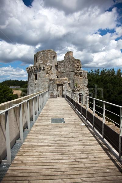 Castle Tower Stock photo © nailiaschwarz