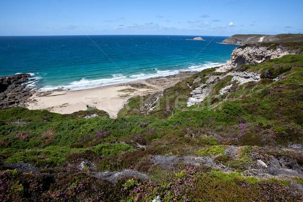 Cliffs and Coast at Cap Frehel Stock photo © nailiaschwarz