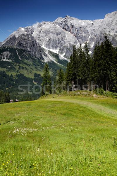 山 表示 山 アルプス山脈 空 ストックフォト © nailiaschwarz