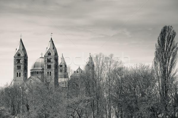表示 中世 大聖堂 水 世界 川 ストックフォト © nailiaschwarz