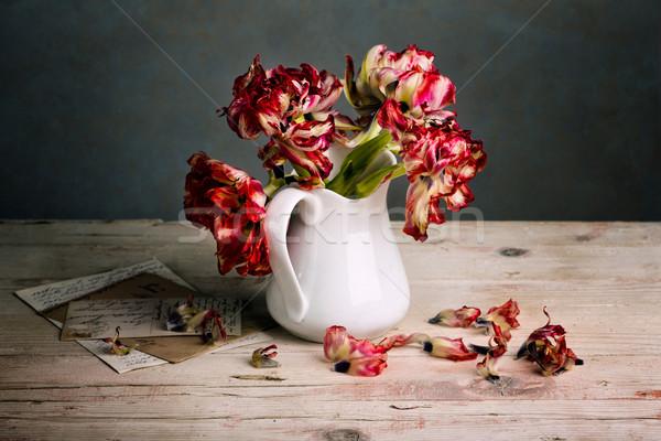 Ancora vita tulipani rosso tulipano fiori porcellana Foto d'archivio © nailiaschwarz