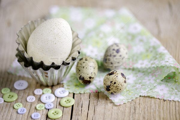 Quail Eggs and Duck Egg Stock photo © nailiaschwarz