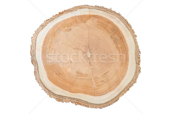 Közelkép felület fából készült vág izolált fehér Stock fotó © nalinratphi