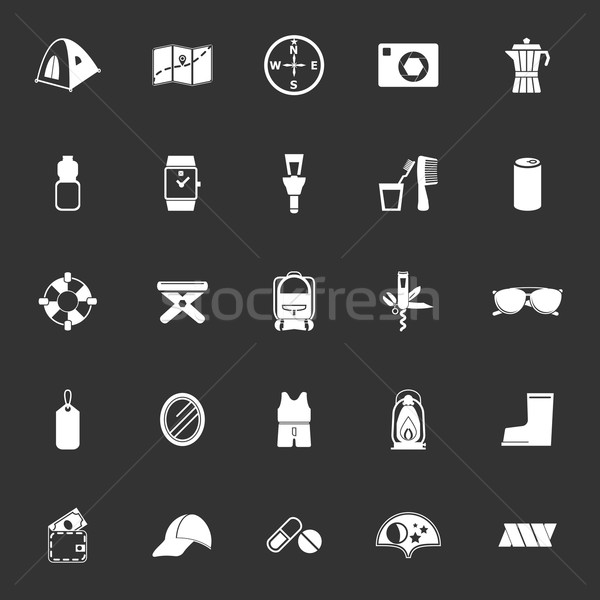 Camping necessary icons on gray background Stock photo © nalinratphi