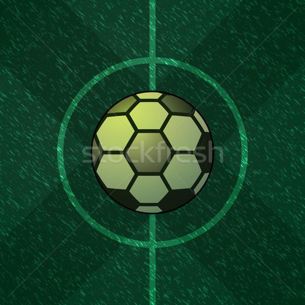 Soccer ball centro verde campo stock vettore Foto d'archivio © nalinratphi