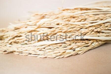 Rizs gabona barna stock fotó étel Stock fotó © nalinratphi