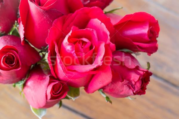 Gyönyörű piros rózsa felfelé zárt stock fotó Stock fotó © nalinratphi