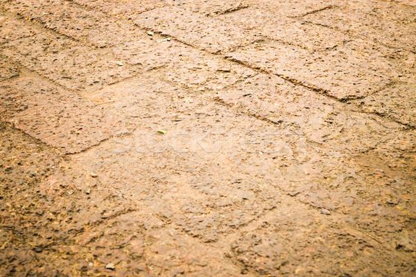 Dry laterite floor texture background Stock photo © nalinratphi