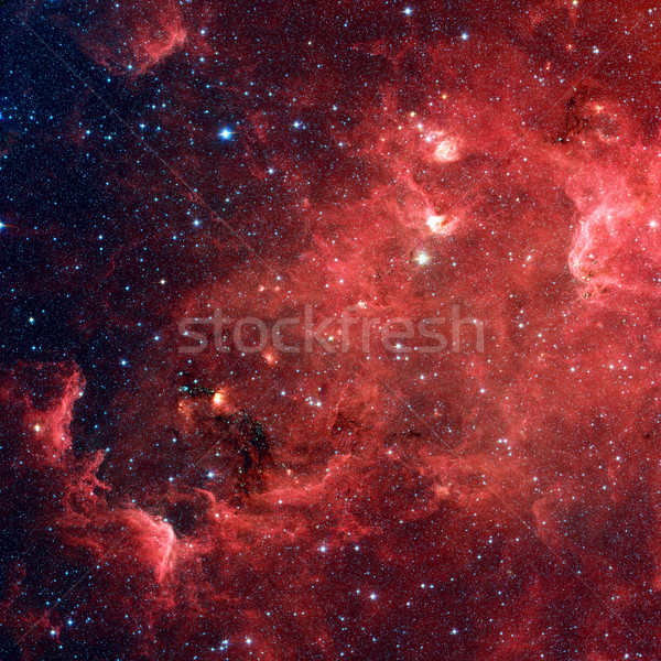 The North America nebula in the constellation Cygnus Stock photo © NASA_images