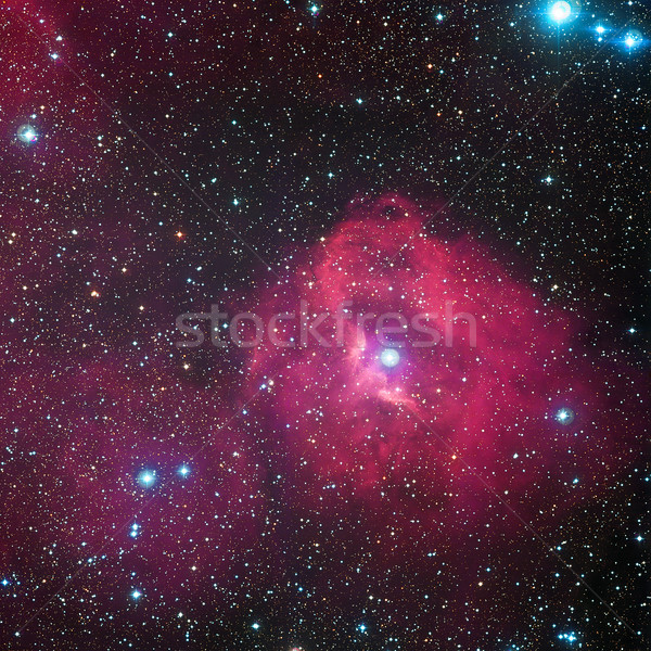 Cloud of hydrogen and newborn stars called Gum 41. Stock photo © NASA_images
