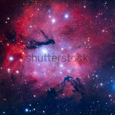 Gum 15 is a nebula located in the constellation of Vela. Stock photo © NASA_images