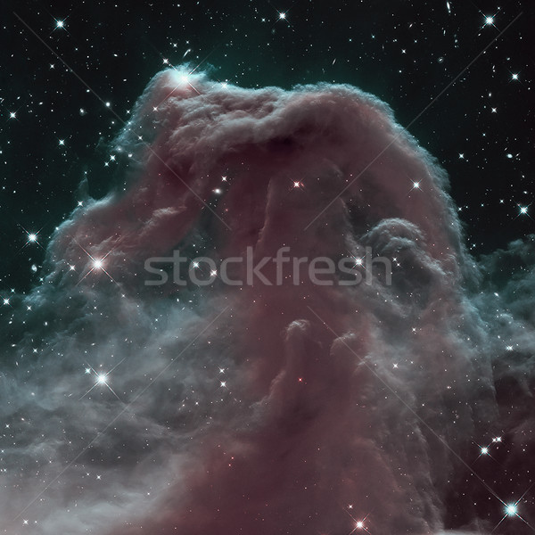 The Horsehead Nebula is a dense cloud of gas and dust Stock photo © NASA_images