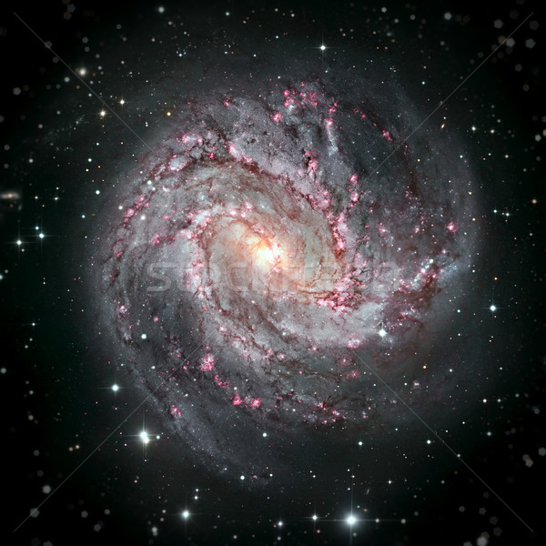 Messier 83 is a barred spiral galaxy in the constellation Hydra. Stock photo © NASA_images
