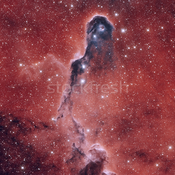 Astronomical scientific background, nebula and stars in outer space. Stock photo © NASA_images