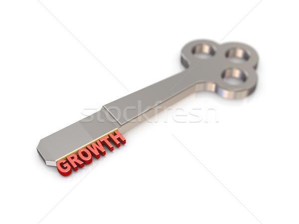 3d growth word key  Stock photo © nasirkhan